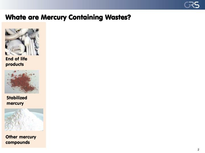 Whate are mercury containing wastes