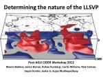 determining the nature of the llsvp