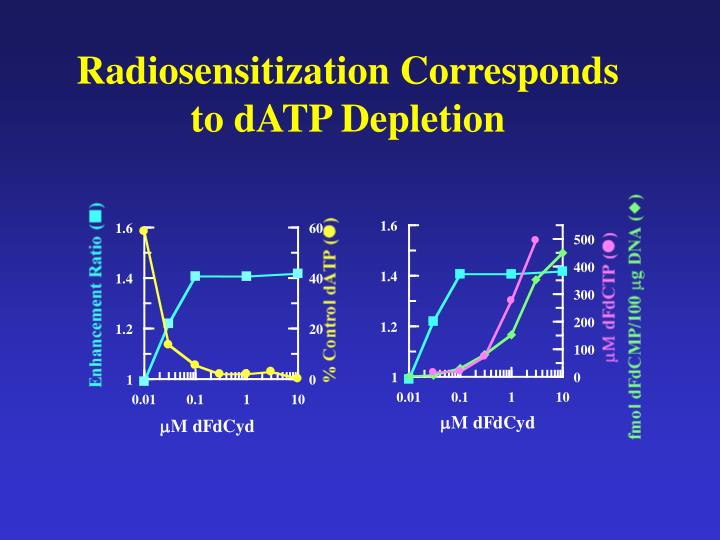 Radiosensitization Corresponds to dATP Depletion
