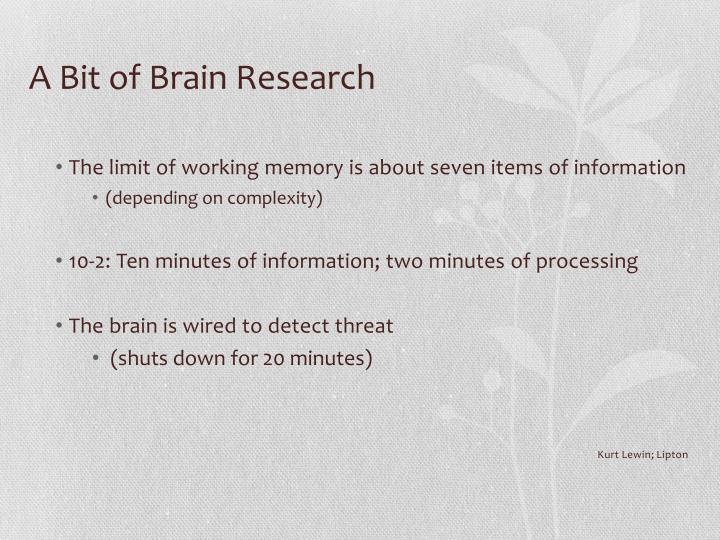 A Bit of Brain Research