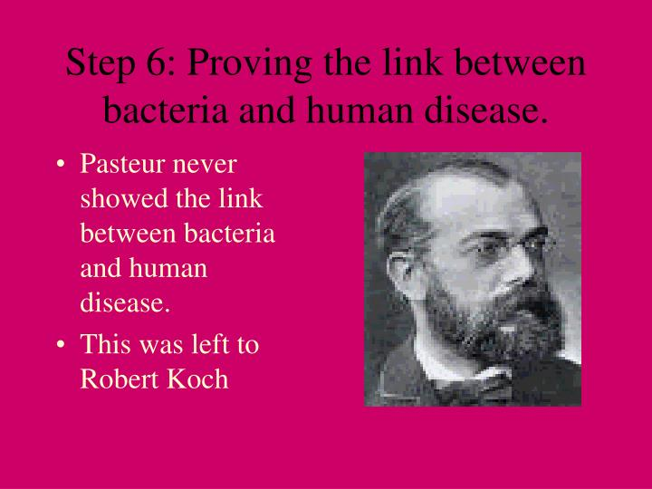 Step 6: Proving the link between bacteria and human disease.