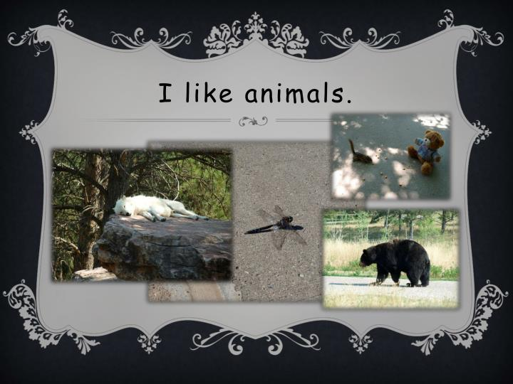 I like animals.
