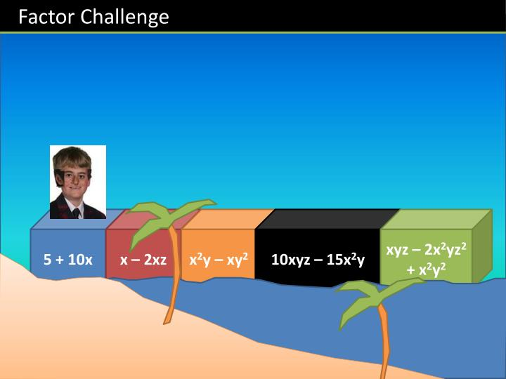 Factor Challenge