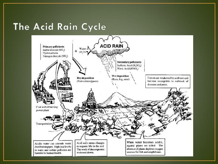 Ppt - Acid Rain Powerpoint Presentation