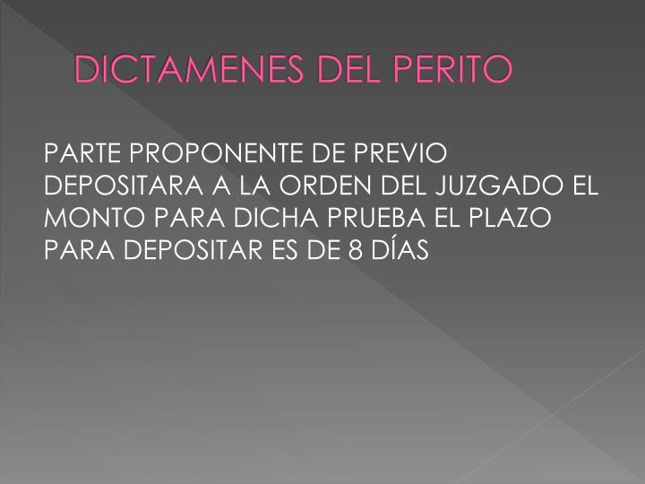 DICTAMENES DEL PERITO