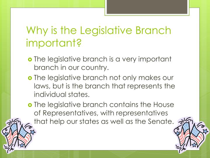 Why is the Legislative Branch important?