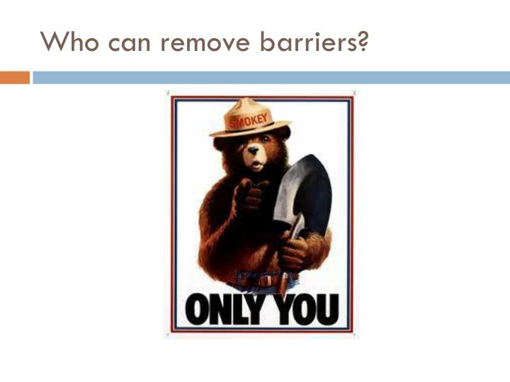 Who can remove barriers?
