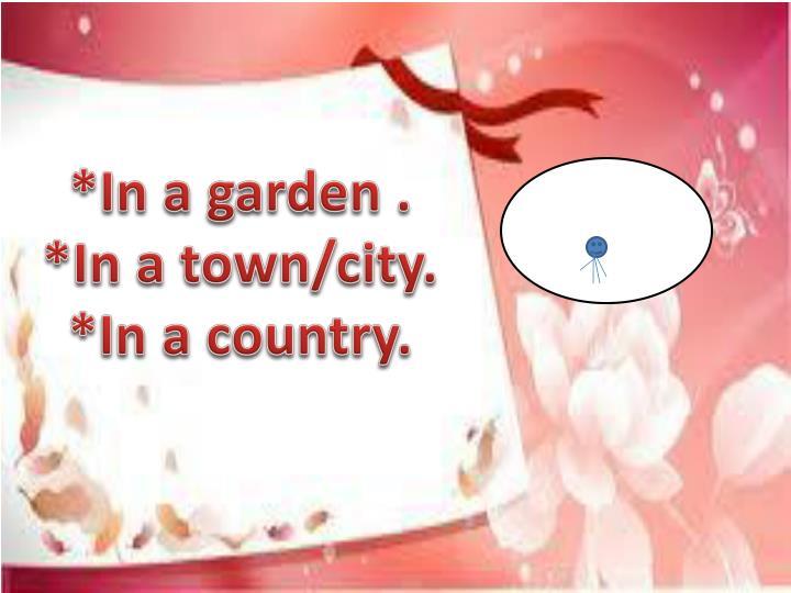 *In a garden .
