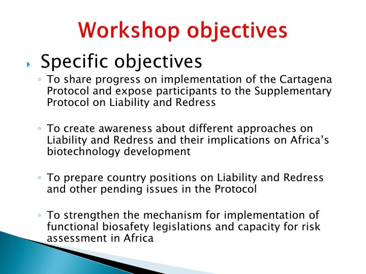 Workshop objectives1