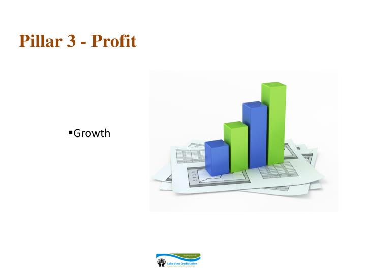 Pillar 3 - Profit