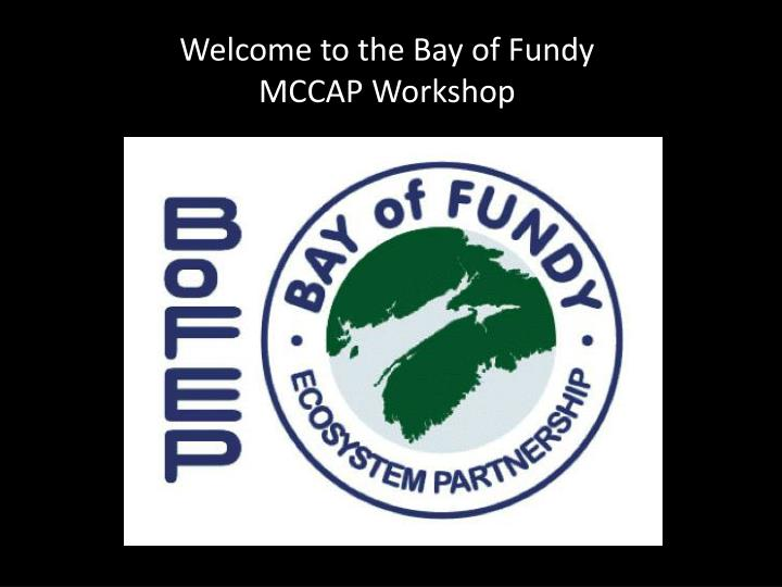 Welcome to the Bay of Fundy