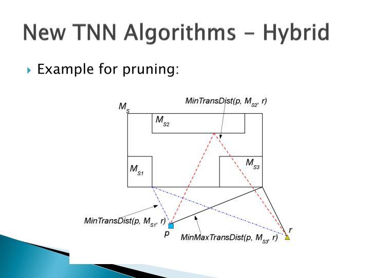New TNN Algorithms - Hybrid
