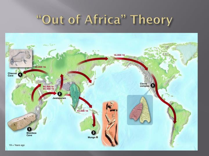Origins of Modern Humans: Multiregional or Out of Africa?