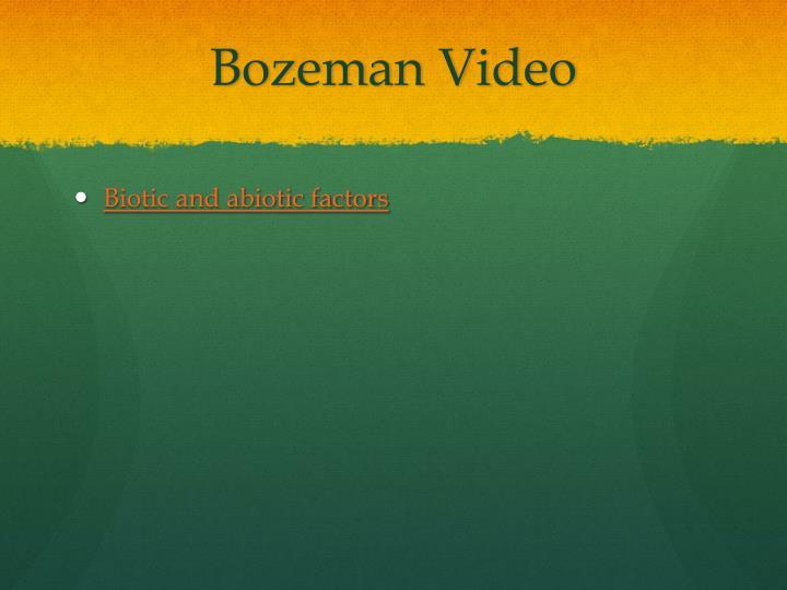 Bozeman Video