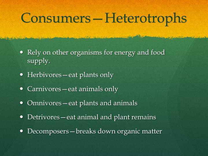 Consumers—Heterotrophs