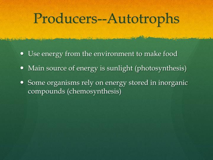 Producers--Autotrophs