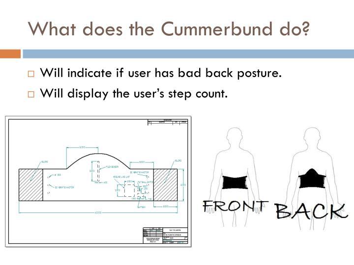 What does the Cummerbund do?