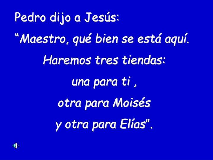 Pedro dijo a Jesús: