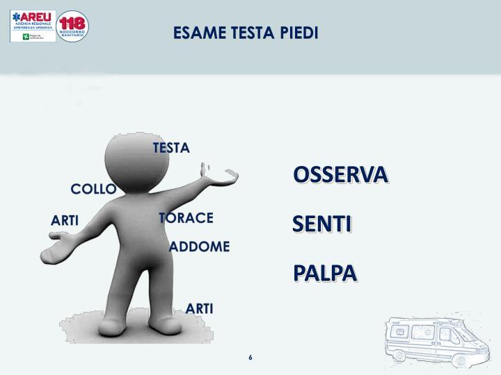 ESAME TESTA PIEDI