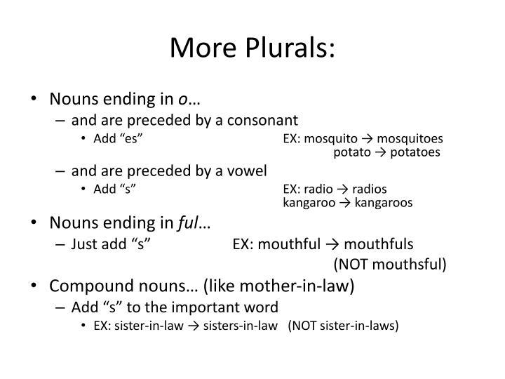 More Plurals: