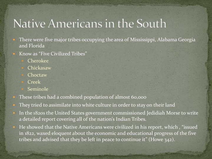 Native Americans in the South