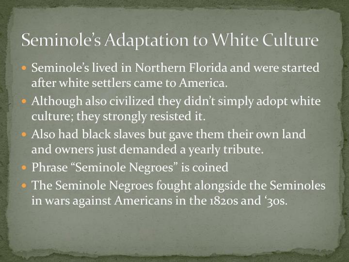Seminole's Adaptation to White Culture