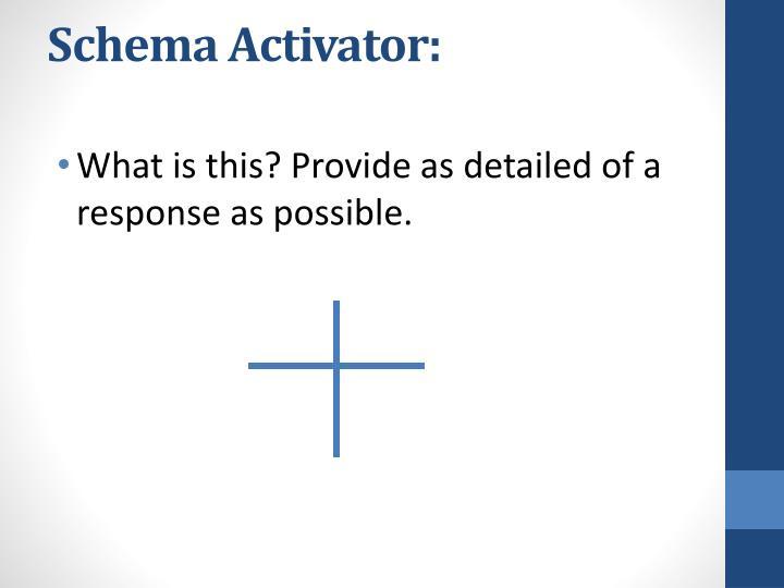 Schema Activator:
