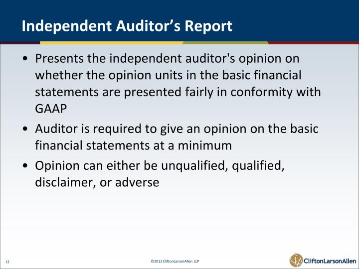 Independent Auditor's Report
