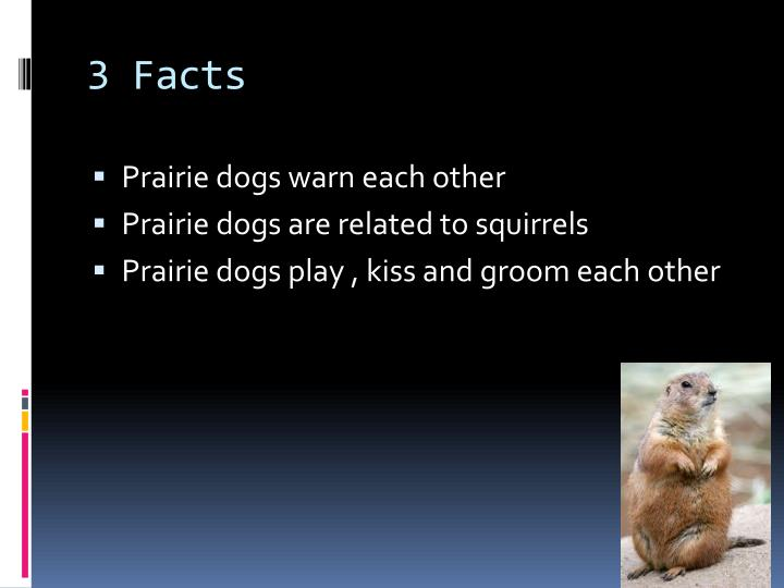 3 Facts