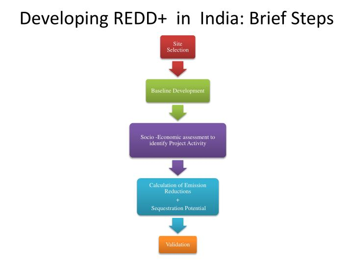 Developing REDD+  in  India: Brief Steps
