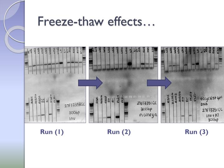 Freeze-thaw effects…