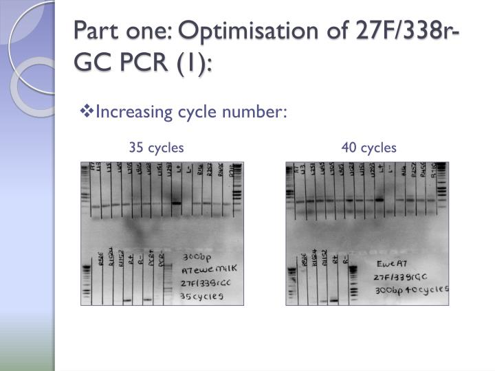 Part one: Optimisation of 27F/338r-GC PCR (1):