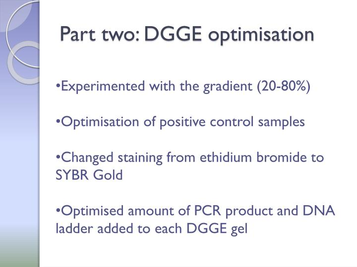 Part two: DGGE optimisation
