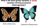 what if we have group variation study variation driving excessive heterogeneity