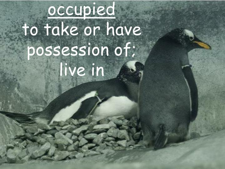 Occupied to take or have possession of live in