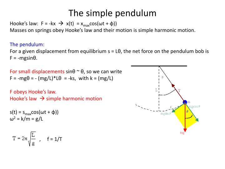 The simple pendulum
