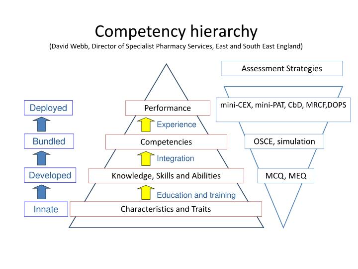 Competency hierarchy