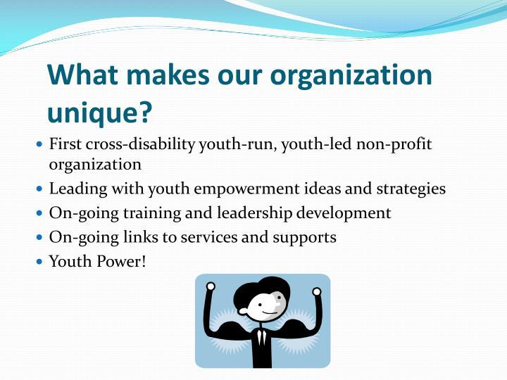 What makes our organization unique?