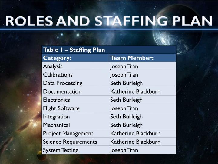 ROLES AND STAFFING PLAN