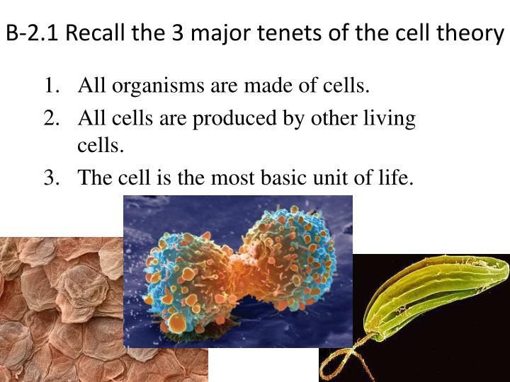 B-2.1 Recall the 3 major tenets of the cell theory