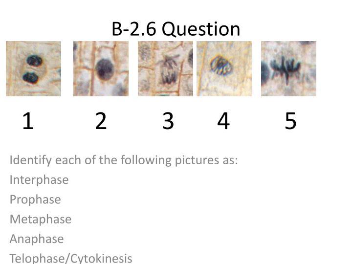 B-2.6 Question