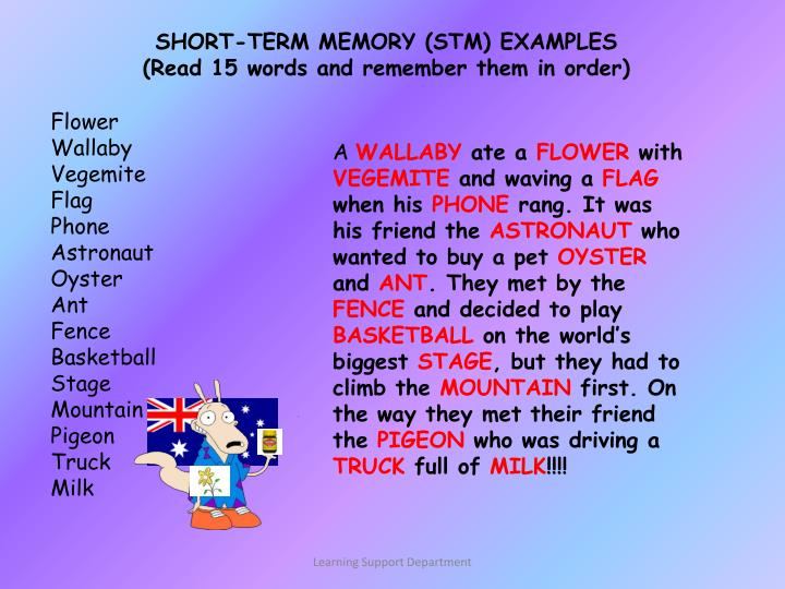 SHORT-TERM MEMORY (STM) EXAMPLES