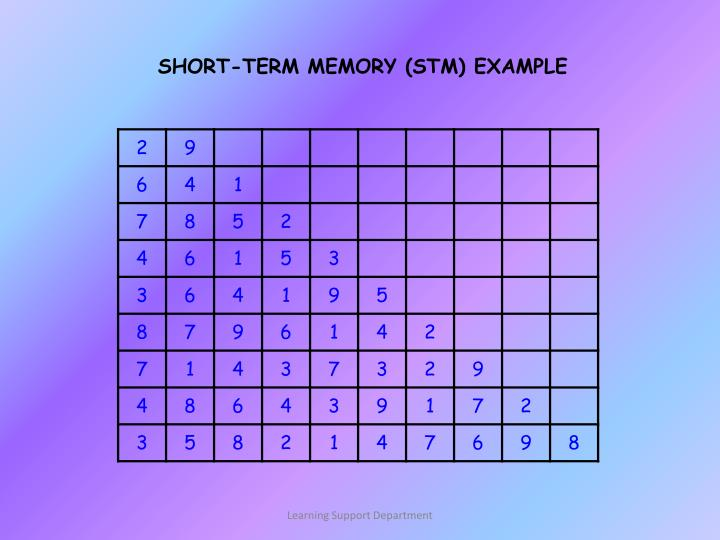 SHORT-TERM MEMORY (STM) EXAMPLE