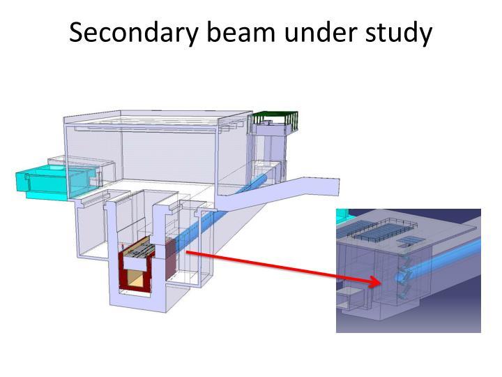 Secondary beam under study