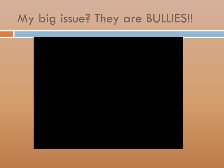 My big issue? They are BULLIES!!