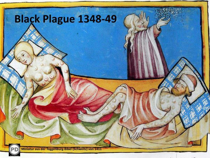 Black Plague 1348-49