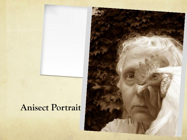 Anisect