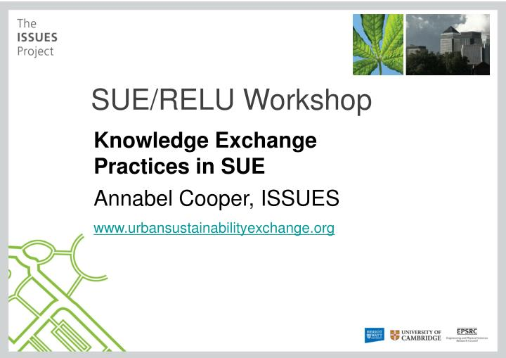 SUE/RELU Workshop