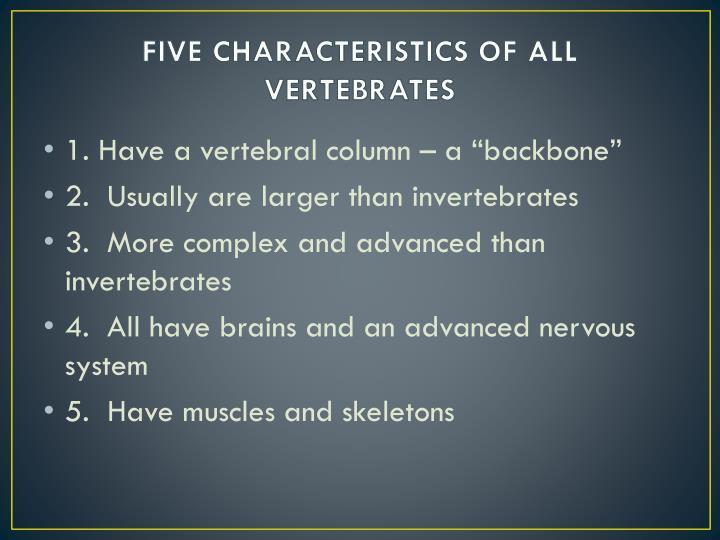 FIVE CHARACTERISTICS OF ALL VERTEBRATES