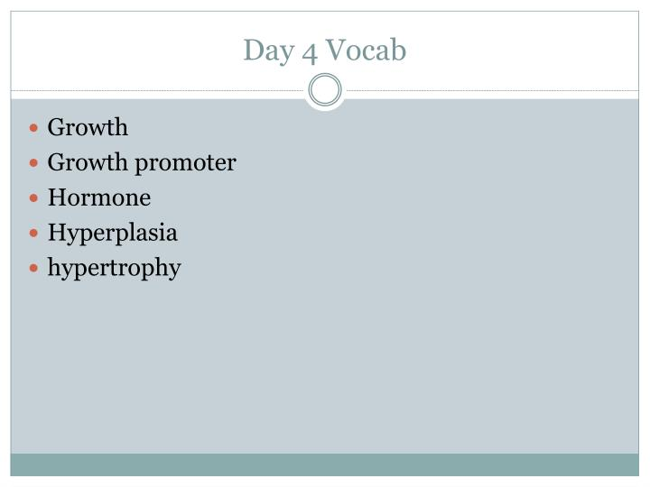 Day 4 Vocab